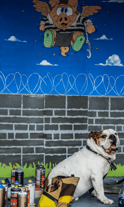 Picture of colorful cartoonish graffiti on wall with a bulldog looking on