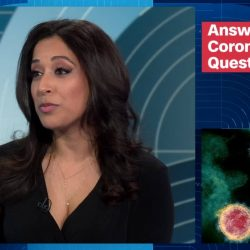 Dr. Seema Yasmin answering questions about the COVID-19
